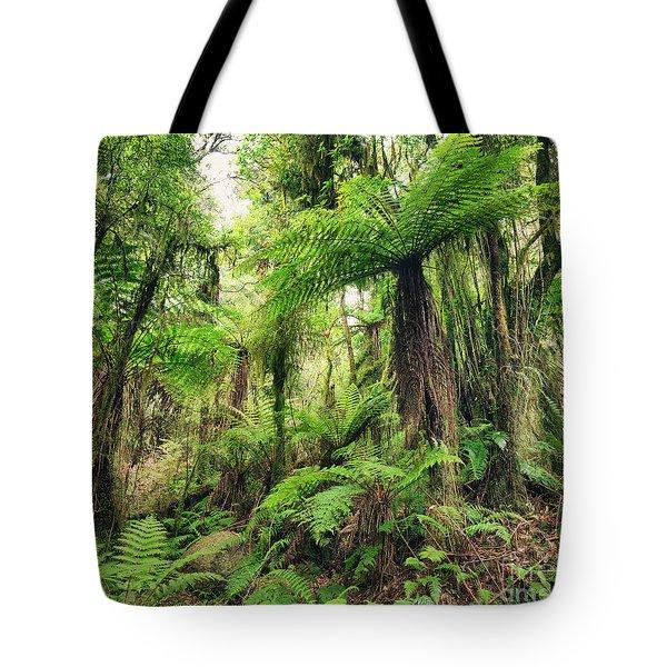 Fern Tree Tote Bag by MotHaiBaPhoto Prints