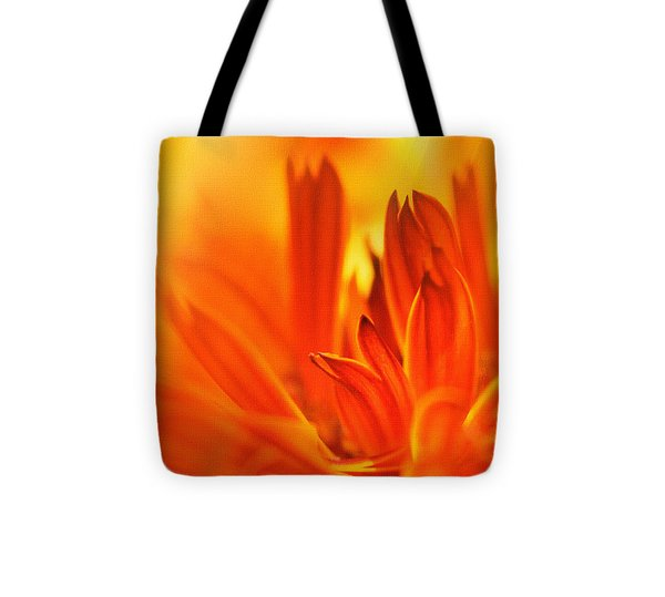 Fire Storm  Tote Bag by Elaine Manley