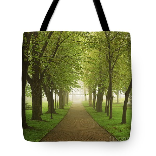 Foggy park Tote Bag by Elena Elisseeva