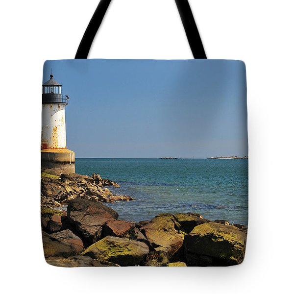 Fort Pickering Light Tote Bag by Catherine Reusch  Daley