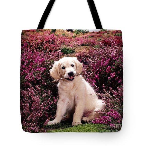 Golden Retriever Puppy Tote Bag by Jane Burton