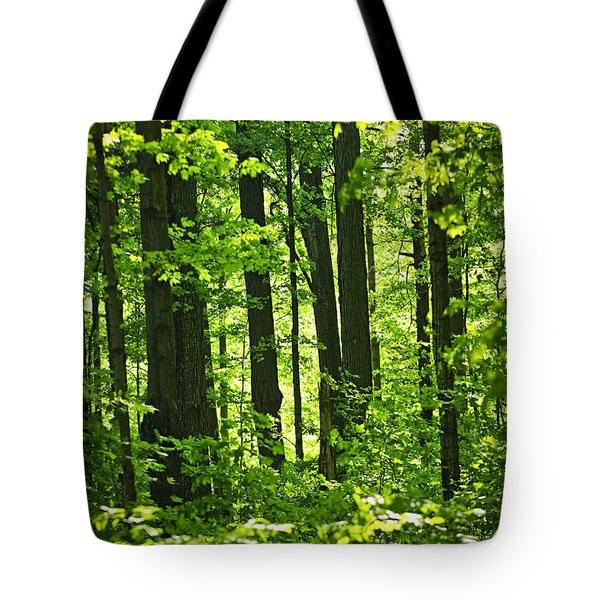 Green Spring Forest Tote Bag by Elena Elisseeva