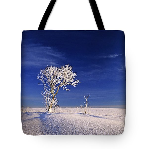 Hoar Frost On Trees, Bungay, Prince Tote Bag by John Sylvester