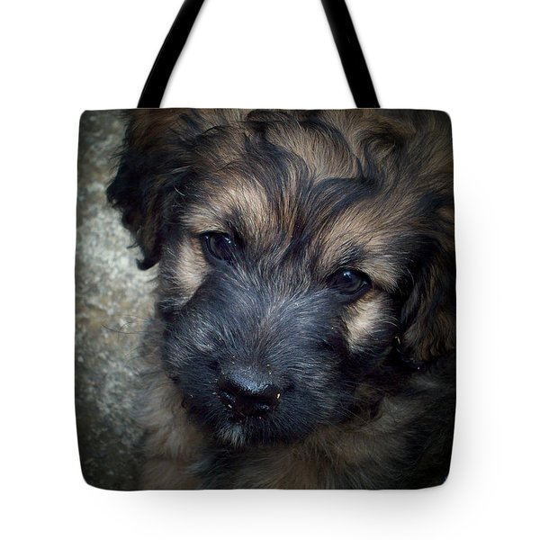 Iggy Tote Bag by Robert Orinski