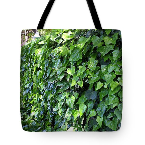 Ivy Wall Tote Bag by Carol Groenen