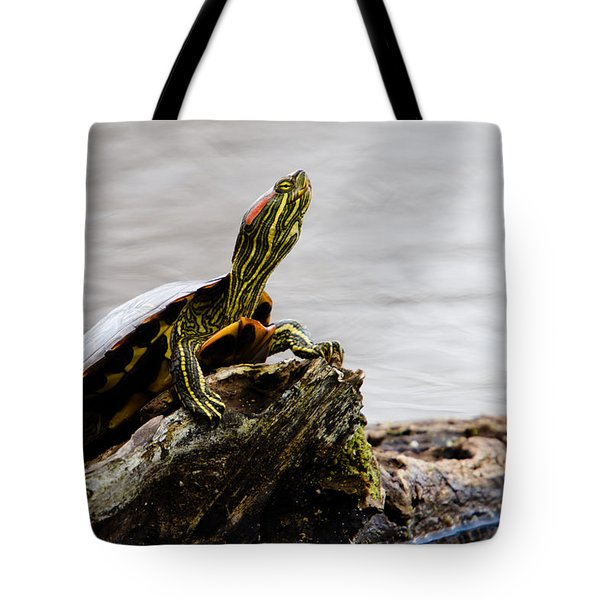King of the Log Tote Bag by Jason Smith