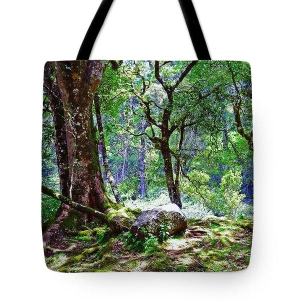 Kingdom Of The Trees. Peradeniya Botanical Garden. Sri Lanka Tote Bag by Jenny Rainbow