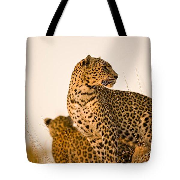 Leopard Panthera Pardus, Arathusa Tote Bag by Stuart Westmorland