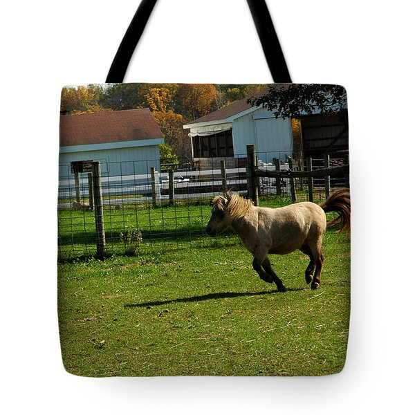 Lets Ride Tote Bag by LeeAnn McLaneGoetz McLaneGoetzStudioLLCcom