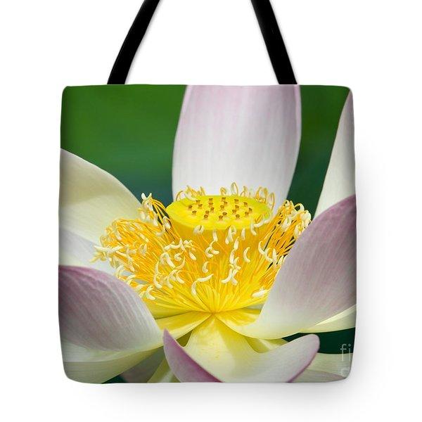 Lotus Up Close Tote Bag by Sabrina L Ryan
