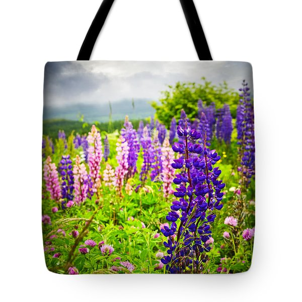 Lupins in Newfoundland meadow Tote Bag by Elena Elisseeva