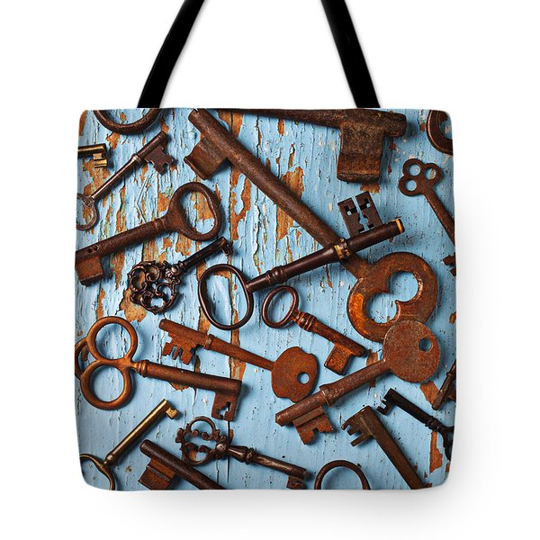 Old Skeleton Keys Tote Bag by Garry Gay