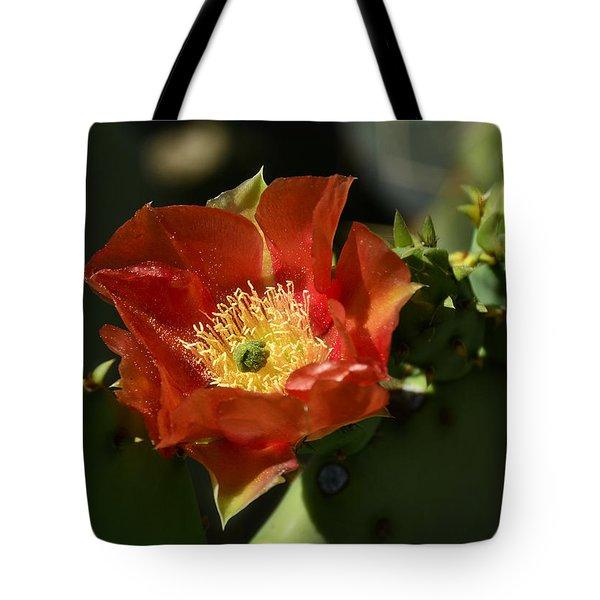 Orange Prickly Pear Blossom  Tote Bag by Saija  Lehtonen