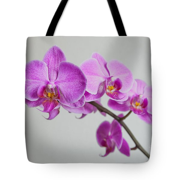 Orchid Tote Bag by Hannes Cmarits