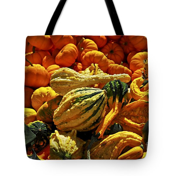 Pumpkins and gourds Tote Bag by Elena Elisseeva