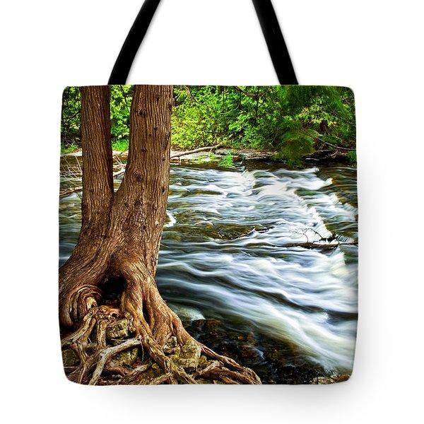 River Through Woods Tote Bag by Elena Elisseeva