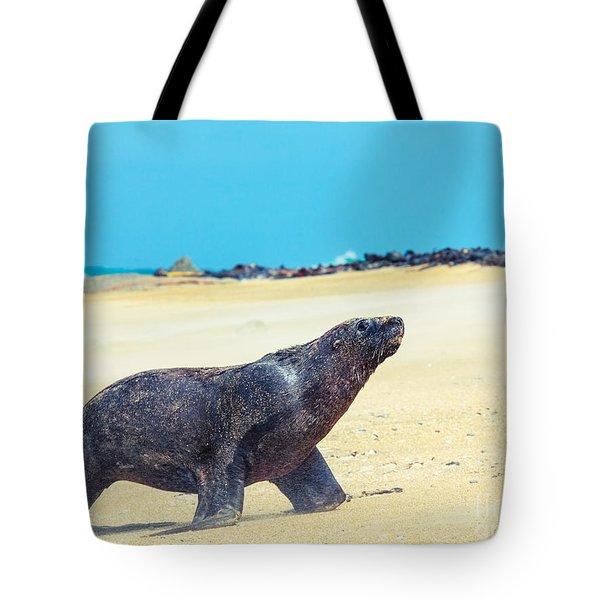 Sea Lion Tote Bag by MotHaiBaPhoto Prints