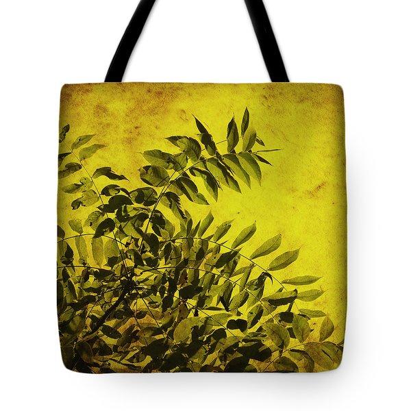 Sun Kissed Tote Bag by Julie Hamilton