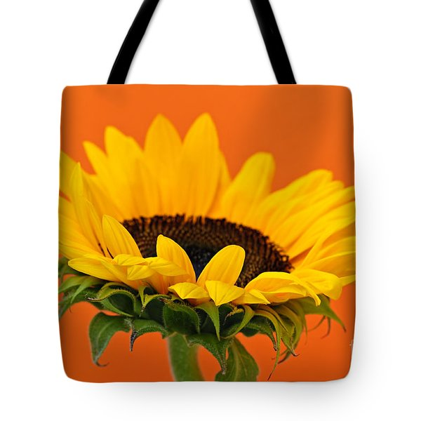 Sunflower Closeup Tote Bag by Elena Elisseeva
