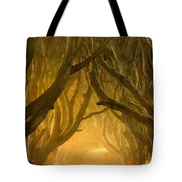 The Dark Hedges III Tote Bag by Pawel Klarecki