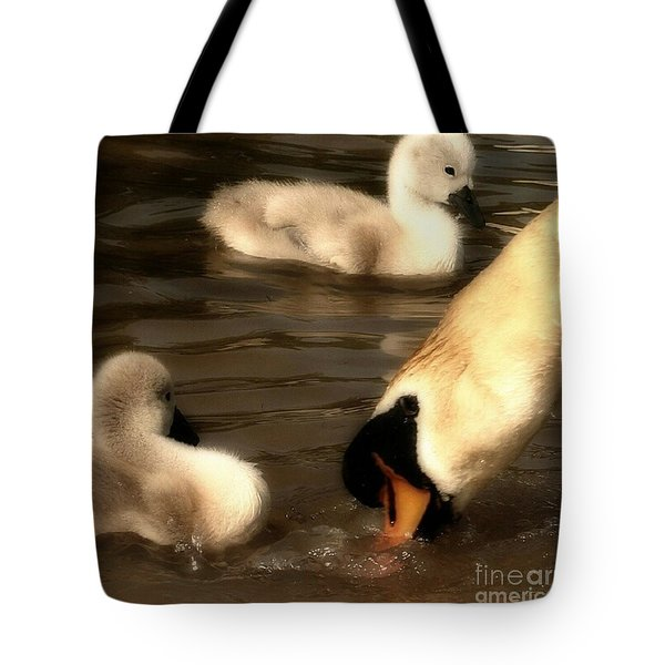 The Lesson Tote Bag by Isabella Abbie Shores