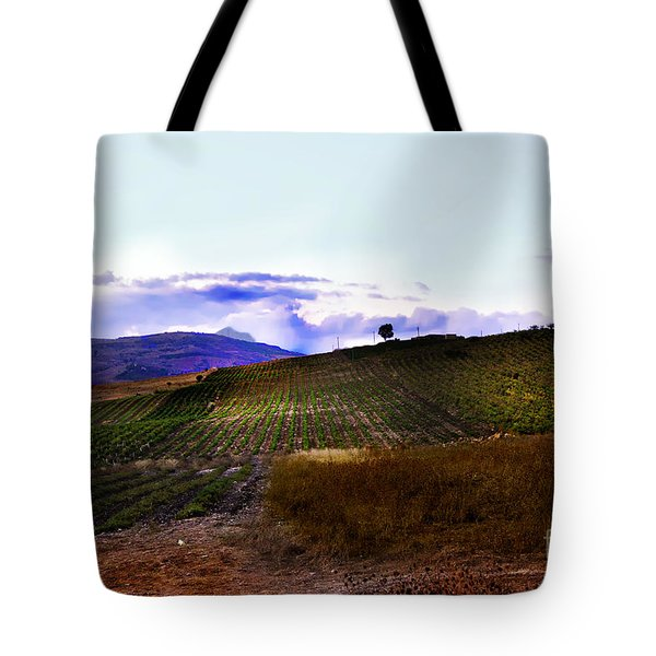 Wine Vineyard In Sicily Tote Bag by Madeline Ellis