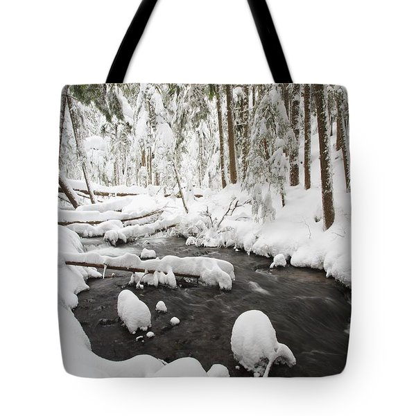 Winter Snow Along Still Creek In Mt Tote Bag by Craig Tuttle