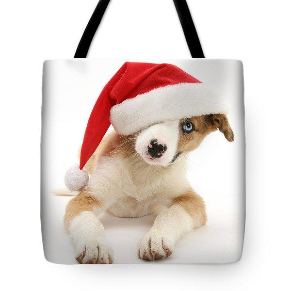 Border Collie Puppy Tote Bag by Jane Burton