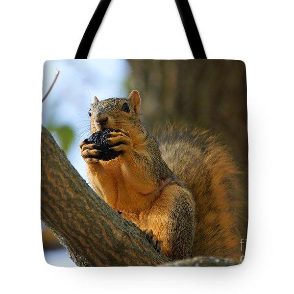 Squirrel Tote Bag by Lori Tordsen