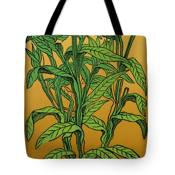 Centaurea Montana, Bachelors Button Tote Bag by Science Source
