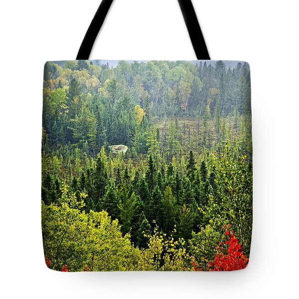 Fall forest rain storm Tote Bag by Elena Elisseeva
