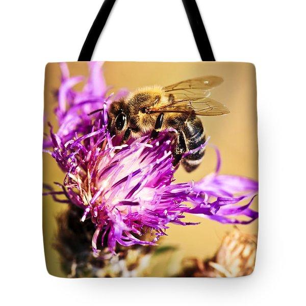 Honey Bee Tote Bag by Elena Elisseeva