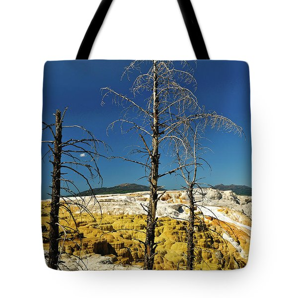 Mammoth Upper Terrace Tote Bag by Greg Norrell