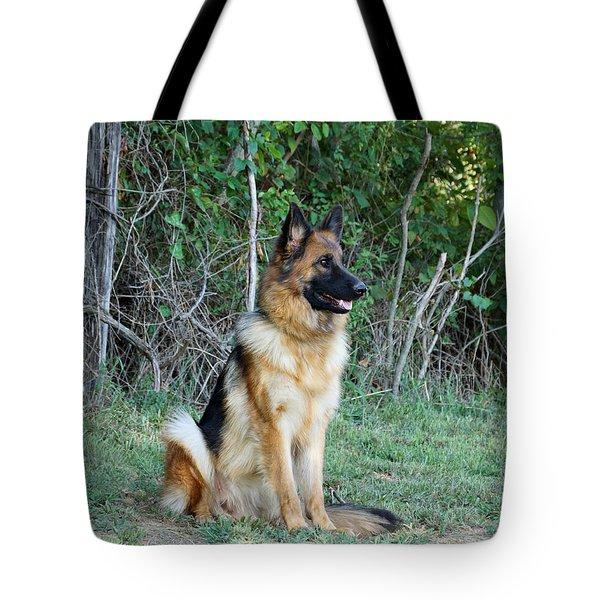 Queena Tote Bag by Sandy Keeton