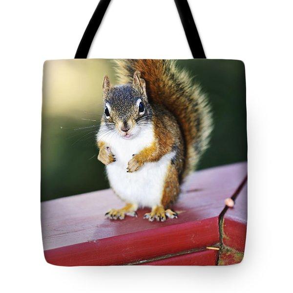 Red Squirrel On Railing Tote Bag by Elena Elisseeva