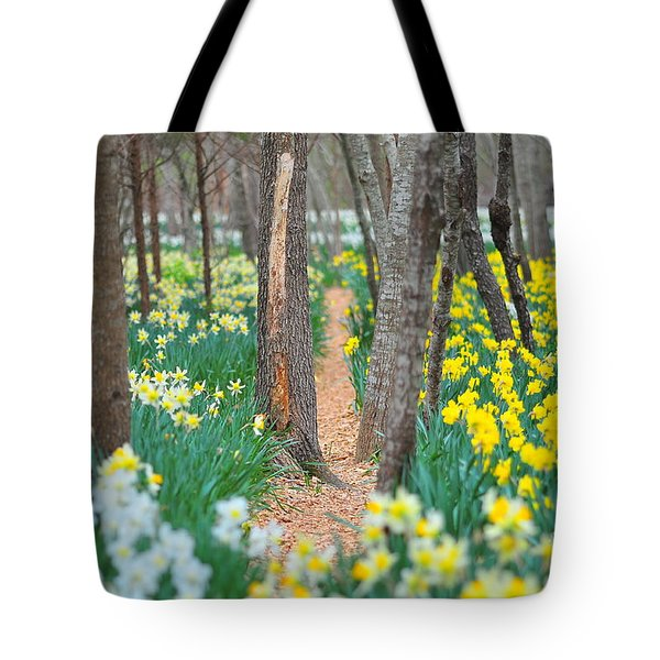 Secret Places Tote Bag by Catherine Reusch  Daley