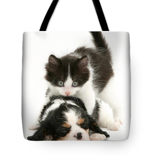 Sleeping Puppy Tote Bag by Jane Burton