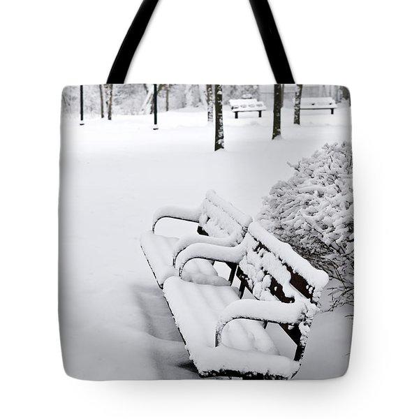 Winter park Tote Bag by Elena Elisseeva