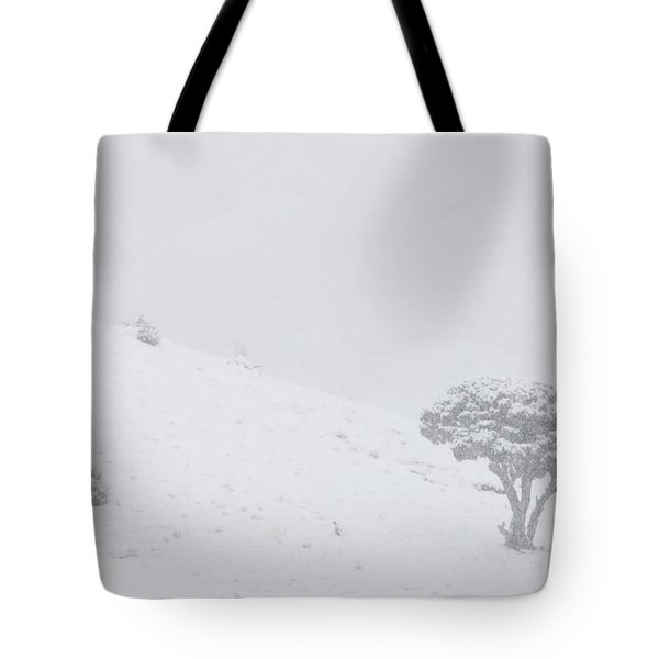 Yellowstone Park Wyoming Winter Snow Tote Bag by Mark Duffy
