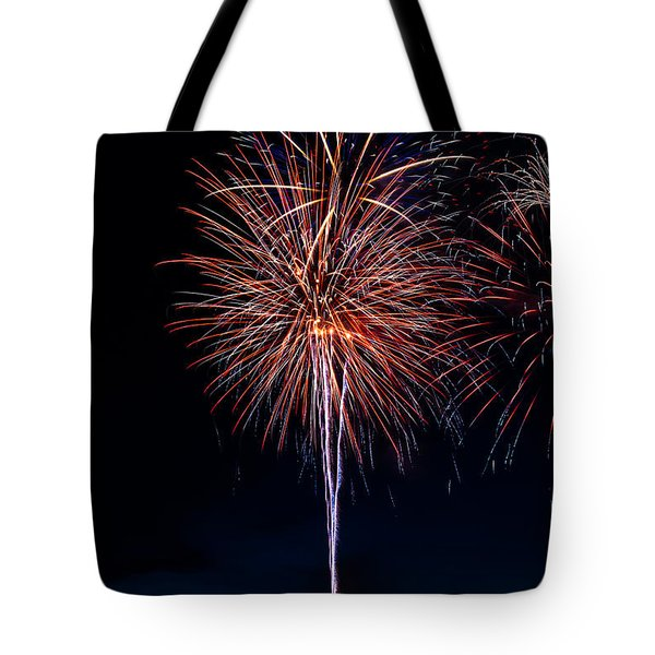 20120706-dsc06458 Tote Bag by Christopher Holmes