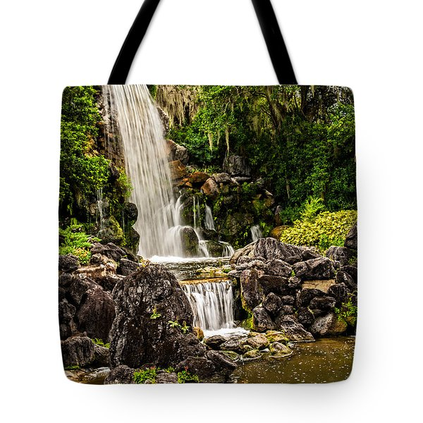 20120915-DSC09800 Tote Bag by Christopher Holmes