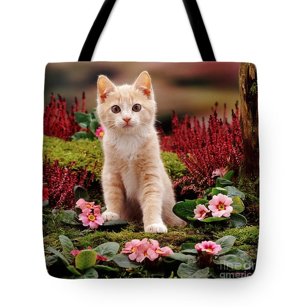 Kitten Tote Bag by Jane Burton