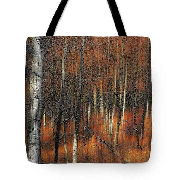 2385 Tote Bag by Peter Holme III