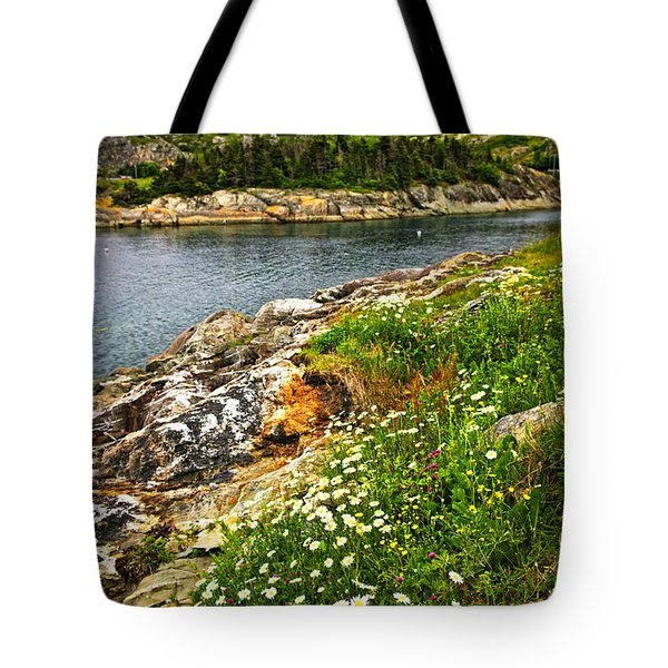 Atlantic Coast In Newfoundland Tote Bag by Elena Elisseeva