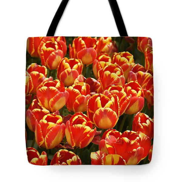 Flaming Tulips Tote Bag by Michele Burgess