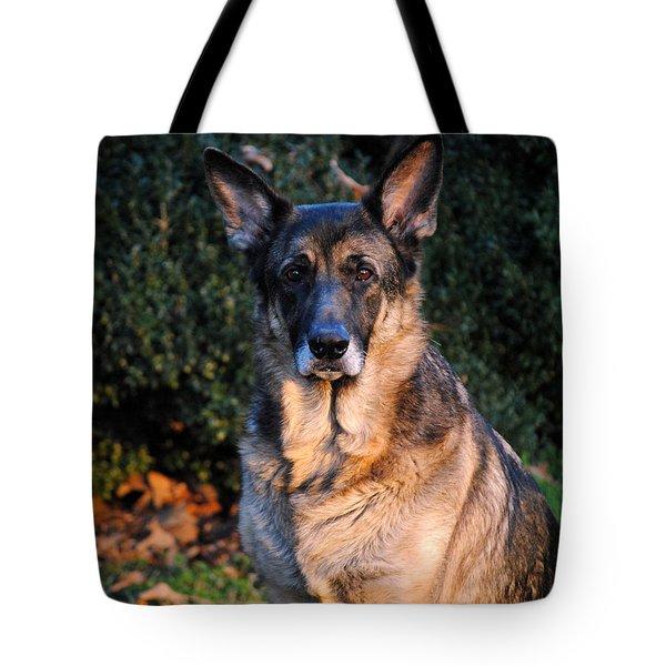 German Shepherd Tote Bag by Jai Johnson