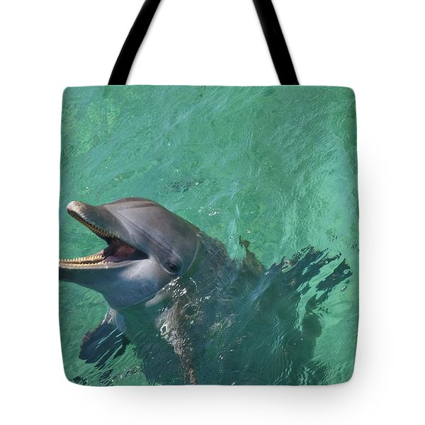 Roatan, Bay Islands, Honduras Tote Bag by Stuart Westmorland