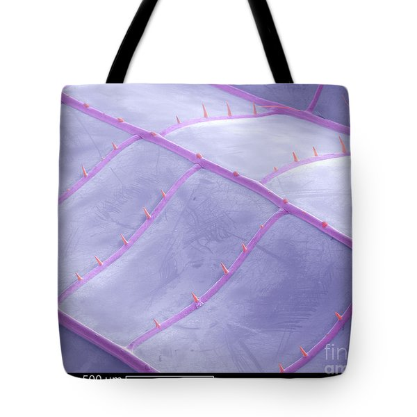 Sem Of Dragonfly Wing Tote Bag by Ted Kinsman