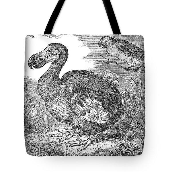 The Mauritius Dodo Tote Bag by Granger