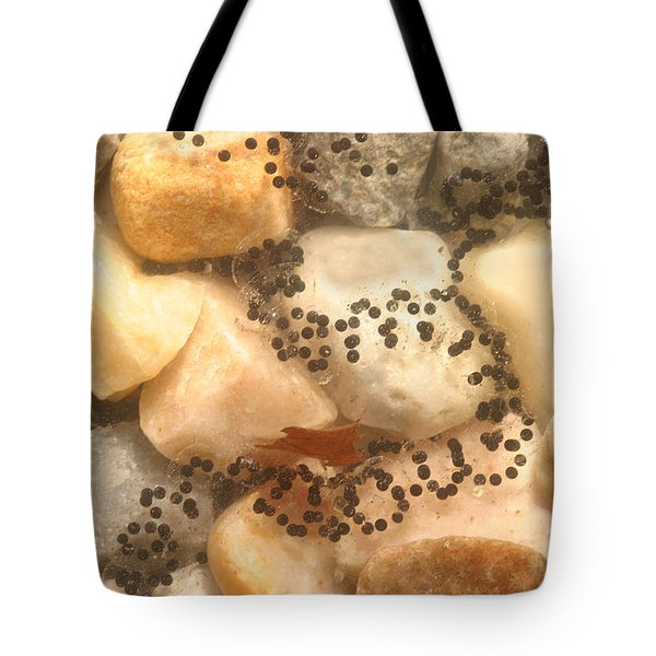 American Toad Eggs Tote Bag by Ted Kinsman
